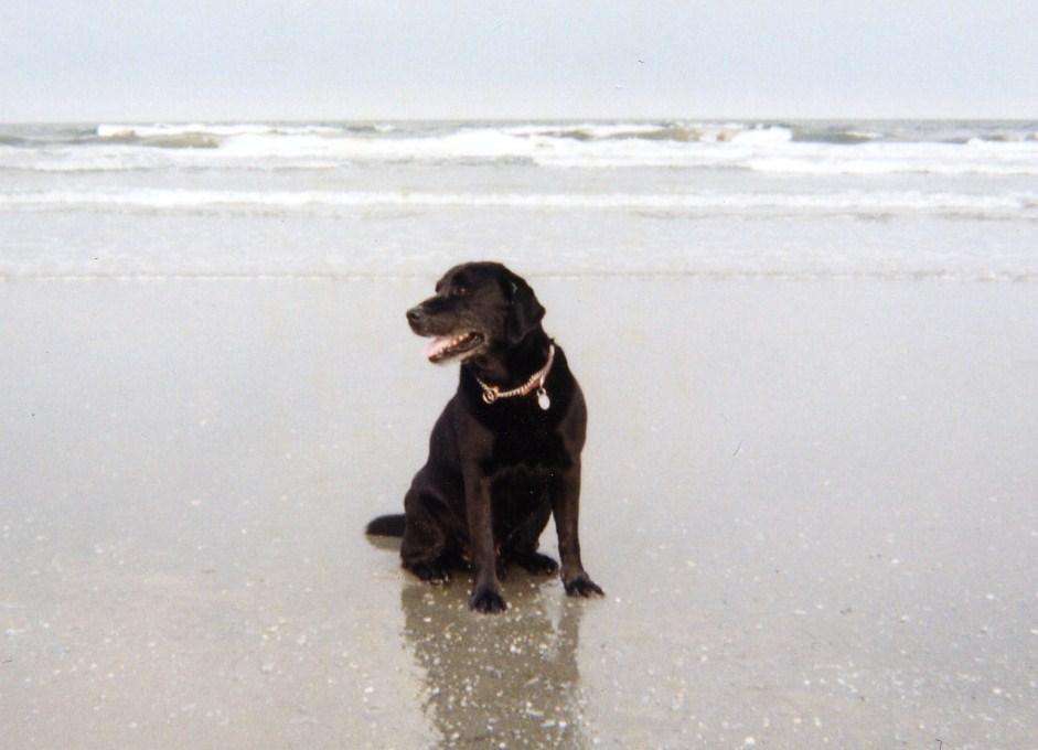char_beach1
